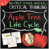 No-Prep Apple Tree Life Cycle