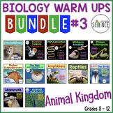 Animal Kingdom Warm Ups Bundle