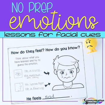 No Prep Feelings and Emotions Facial Cues