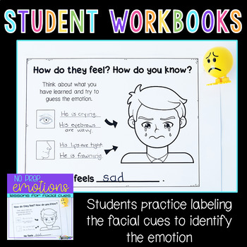 Feelings and Emotions Activities for Facial Expressions No Prep
