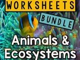 Animals & Ecosystems Worksheets & Printables Bundle