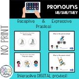 No Prep, No Print, Pronouns!