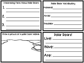 No Prep Polar Bear Research Flip Flap and Craft