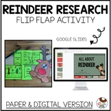No Prep Reindeer Research Flip Flap and Craft