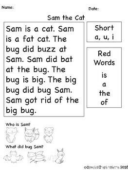 No Prep! Short Vowels Phonetic Reading Comprehension Passages, CVC Worksheets