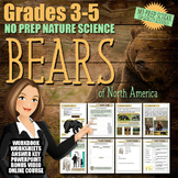 No-Prep Summer Nature Science - Bears of North America