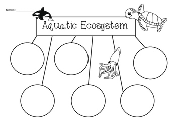 4 5 aquatic ecosystems worksheet answers