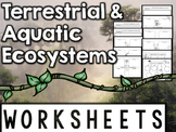 Ecosystems Worksheets & Printables