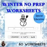No Prep Winter Theme Set for Special Education