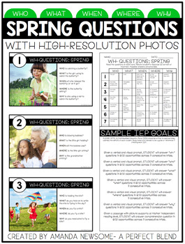 No Print Interactive Activity (Plus Task Cards): Spring Wh- Questions