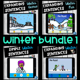 No Print Winter Sports Activity Bundle Pronouns Verbs Wh Questions