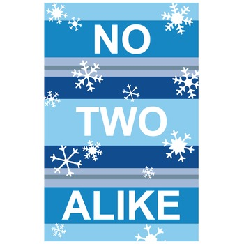 No Two Alike Snowflake Classroom Poster