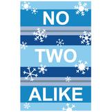 No Two Alike Snowflake Classroom Poster