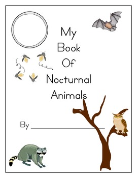 nocturnal animal book by kg teacher teachers pay teachers. Black Bedroom Furniture Sets. Home Design Ideas