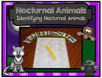 Nocturnal Animal Center
