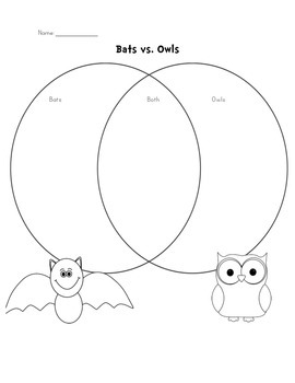 Nocturnal Animal Math and Literacy Mini Bundle