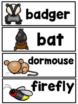 Nocturnal Animal Mega Bundle  (Emergent Reader, Lap Book, and Vocabulary Cards)