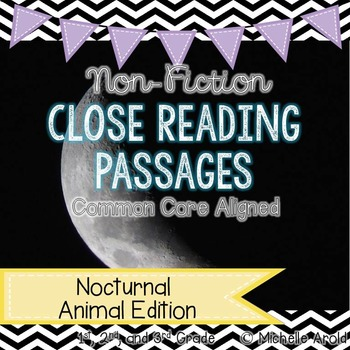 Nocturnal Close Reading