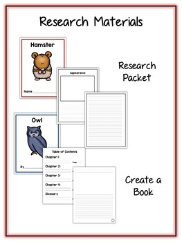Nocturnal Animal Research Project - 15 Types, Vocab Cards, Packet, Book  + More!