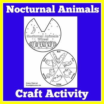 Nocturnal Animals Activity | Nocturnal Animals Unit