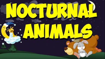 Nocturnal Animals! (A Music Video)
