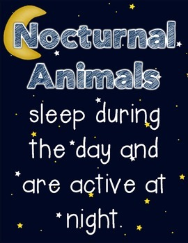 Nocturnal Animals-A Science Unit for Little Learners