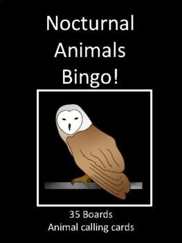 Nocturnal Animals BINGO!