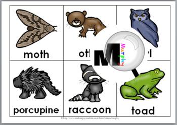 Nocturnal Animals Bingo Game
