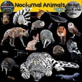 Nocturnal Animals Clip Art Photo & Artistic Digital Stickers Set