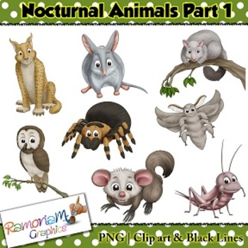 Nocturnal Animals Clip art by RamonaM Graphics | TpT