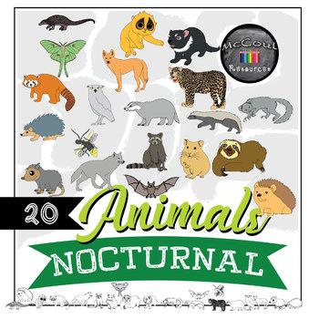 Nocturnal Animals Clipart