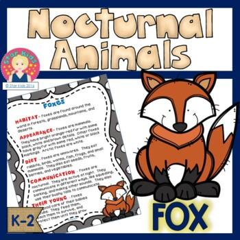 Fox -Nocturnal Animals