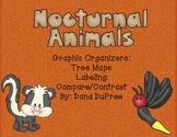 Nocturnal Animals Graphic Organizers