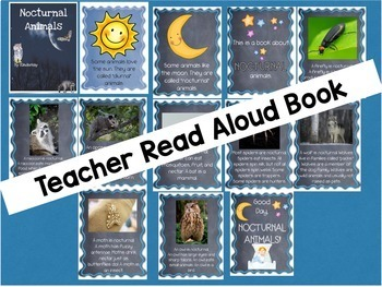 Nocturnal Animals Science Pack - a thematic unit for Kindergarten