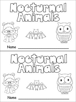 nocturnal animals nonfiction leveled reader level c kindergarten science. Black Bedroom Furniture Sets. Home Design Ideas