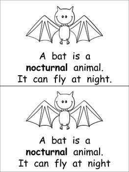 Nocturnal Animals- Nonfiction Leveled Reader- Level C Kindergarten Science