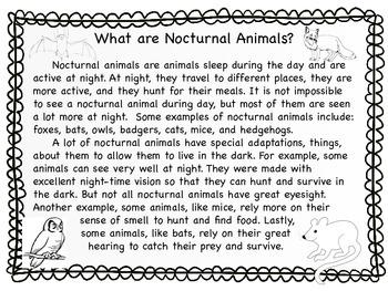 Nocturnal Animals Nonfiction Passage