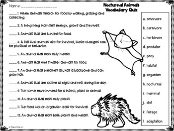Nocturnal Animals    (Print and Go No PREP)