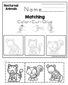 Image of: Animales Nocturnos Nocturnal Animals Printable Teachers Pay Teachers Nocturnal Animals Printable By Preschool Printable Tpt