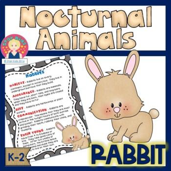 Nocturnal Animals - Rabbit