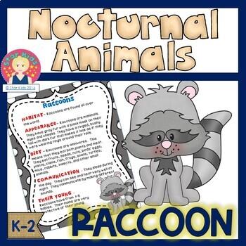 Nocturnal Animals - Raccoon