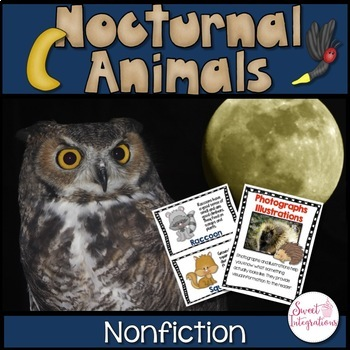 NOCTURNAL ANIMALS: Research, Posters, Slideshow, Flipbook,