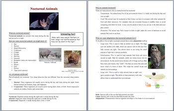 Nocturnal Animals - Science Reading Article - Grades 5-7