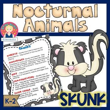 Nocturnal Animals - Skunk