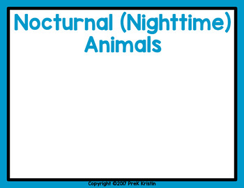 Nocturnal Animals Sorting Game