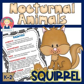 Nocturnal Animals - Squirrel