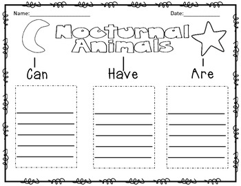 Nocturnal Animals Tree Map
