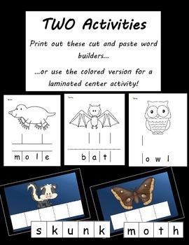 Bats - Nocturnal Animals Vocabulary Activities (2 Activities)