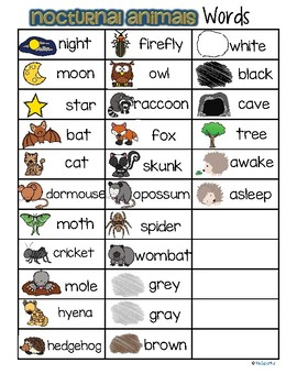 nocturnal animals vocabulary words list free by kidsparkz tpt. Black Bedroom Furniture Sets. Home Design Ideas