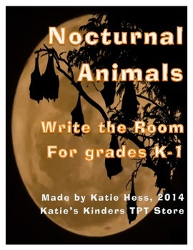 Nocturnal Animals Write the Room - with real photographs!